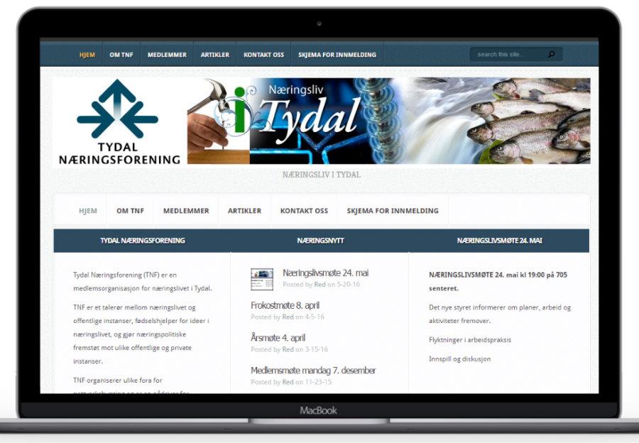 Forstørret bilde av Hjemmesiden til Tydal næringsforening